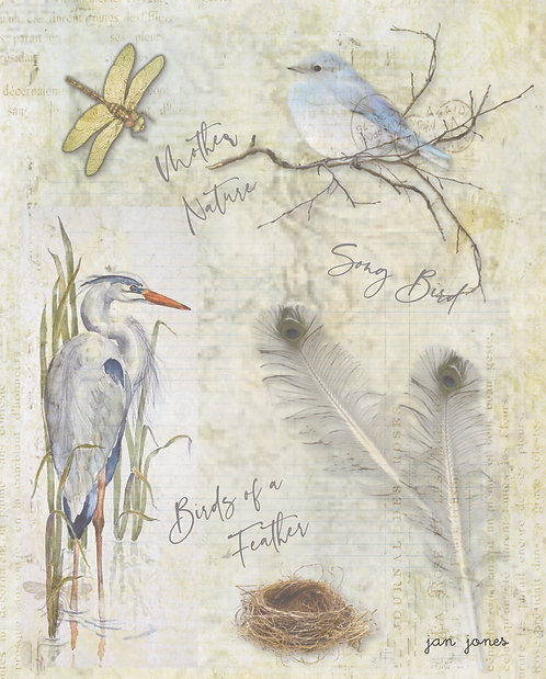 Birds of a Feather by Jan Jones (Print)