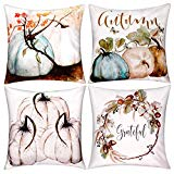 Fall Pillow Covers Gorgeous