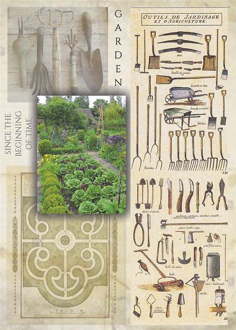 Garden Since the Beginning of Time