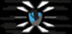 Spinnendiagramm_V02.png