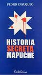 la historia secreta mapuche.jpg
