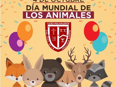 """Efemérides: 4 de octubre """"Día mundial de los animales"""""""