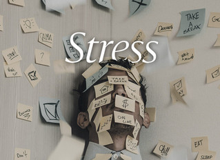 Níveis da consciência e estresse