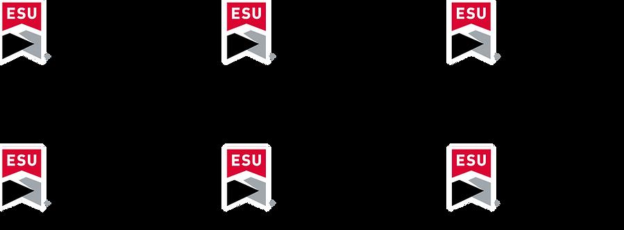 ESU4.png