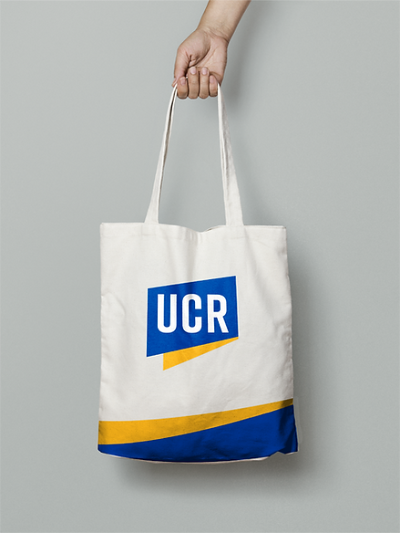 UCR_Inst8.png