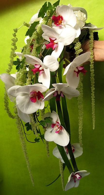 fleurs 068