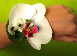 fleurs 072