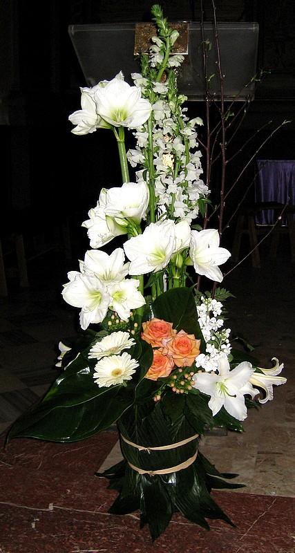 fleurs 249