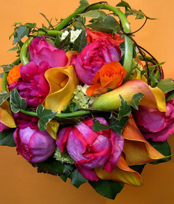 fleurs 029