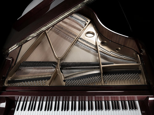 Thursdays 2:15 PM - 2:45 PM Piano