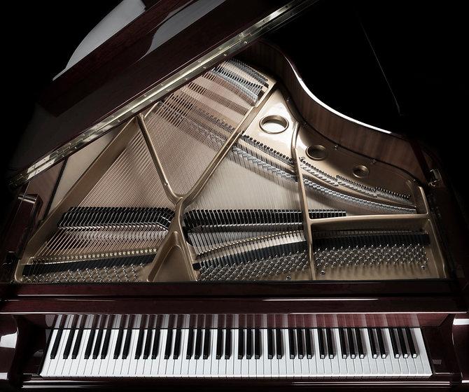 San Francisco Piano lesson