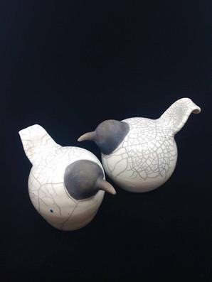 2 Gulls web.jpg