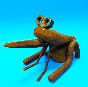 Blair -105 Nut frog.jpg