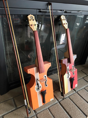 2 violins-1.jpeg