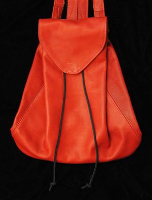 McGuire-131- red handbag.jpg