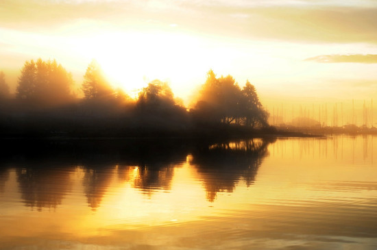 Satterwhite Misty Sun on Eagle Harbor