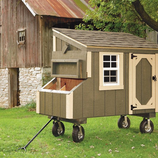 small-chicken-coops-Avocado-L35-With-Opt