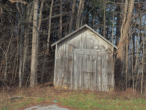 old abandoned shed in the woods