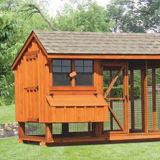 chicken-coop-and-run-6x10-Combination-16