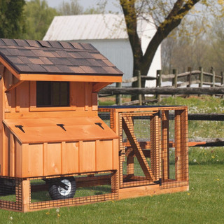 chicken-coop-tractor-3x4-stained-tractor