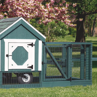 chicken-coop-tractor-3x3-tractor-painted