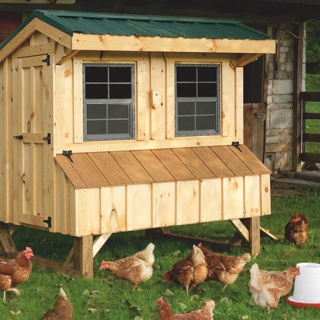 prefab-chicken-coops-Q46-1600x1600.jpg