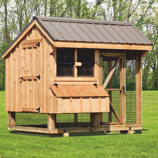 chicken-coop-and-run-6x8-Combination-160