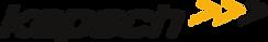 Logo_Kapsch.svg (1).png