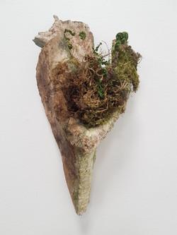 Bone with moss landscape