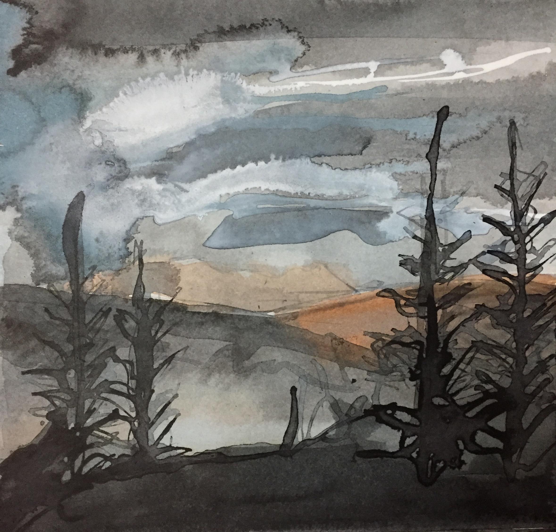 Arran, Through the trees 01