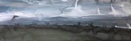 Dartmoor, Landscape in the fog 01
