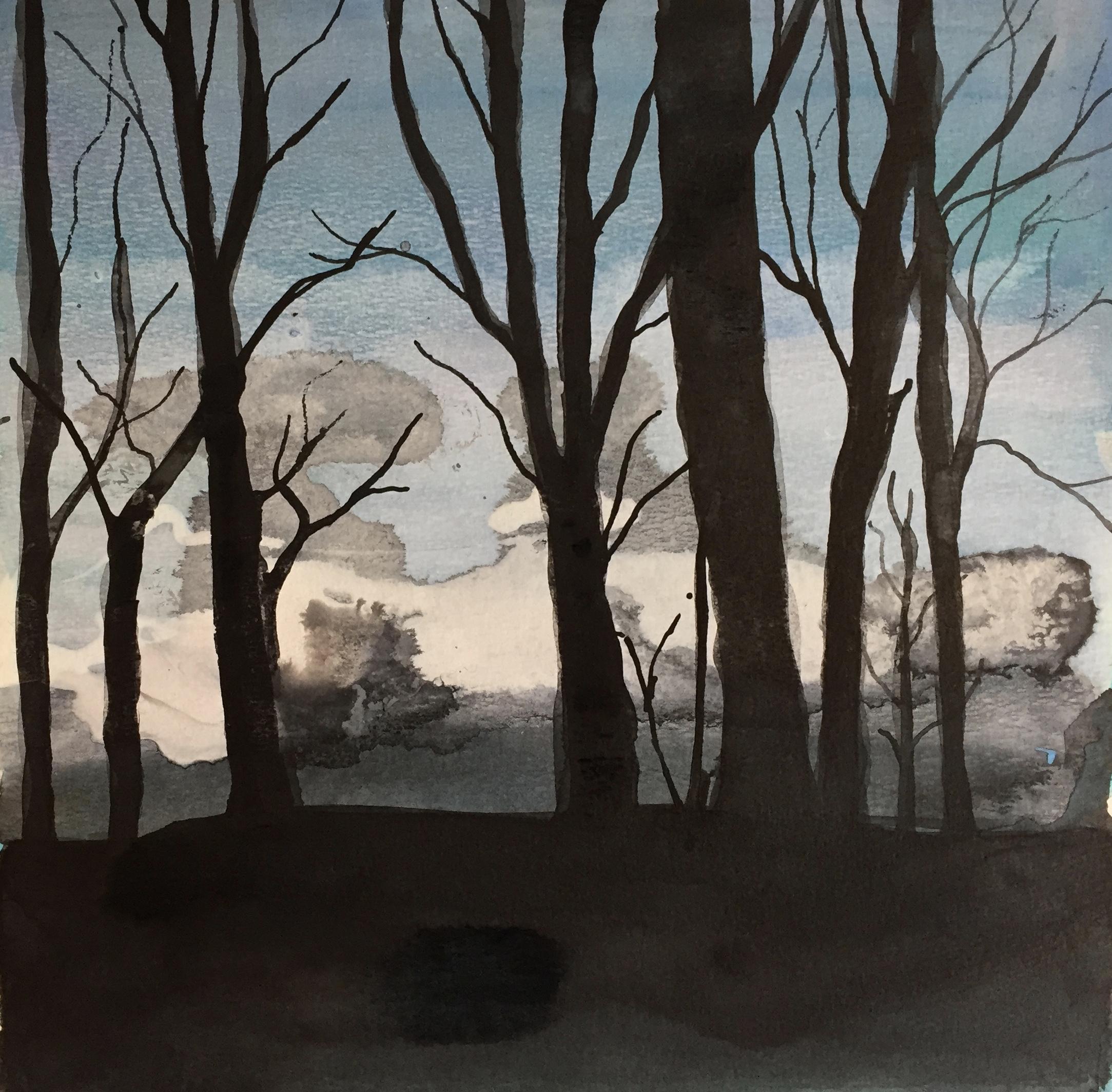 Dartmoor,  Light through trees 02