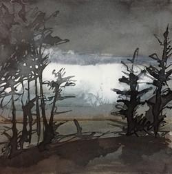 Arran, Through the trees 02