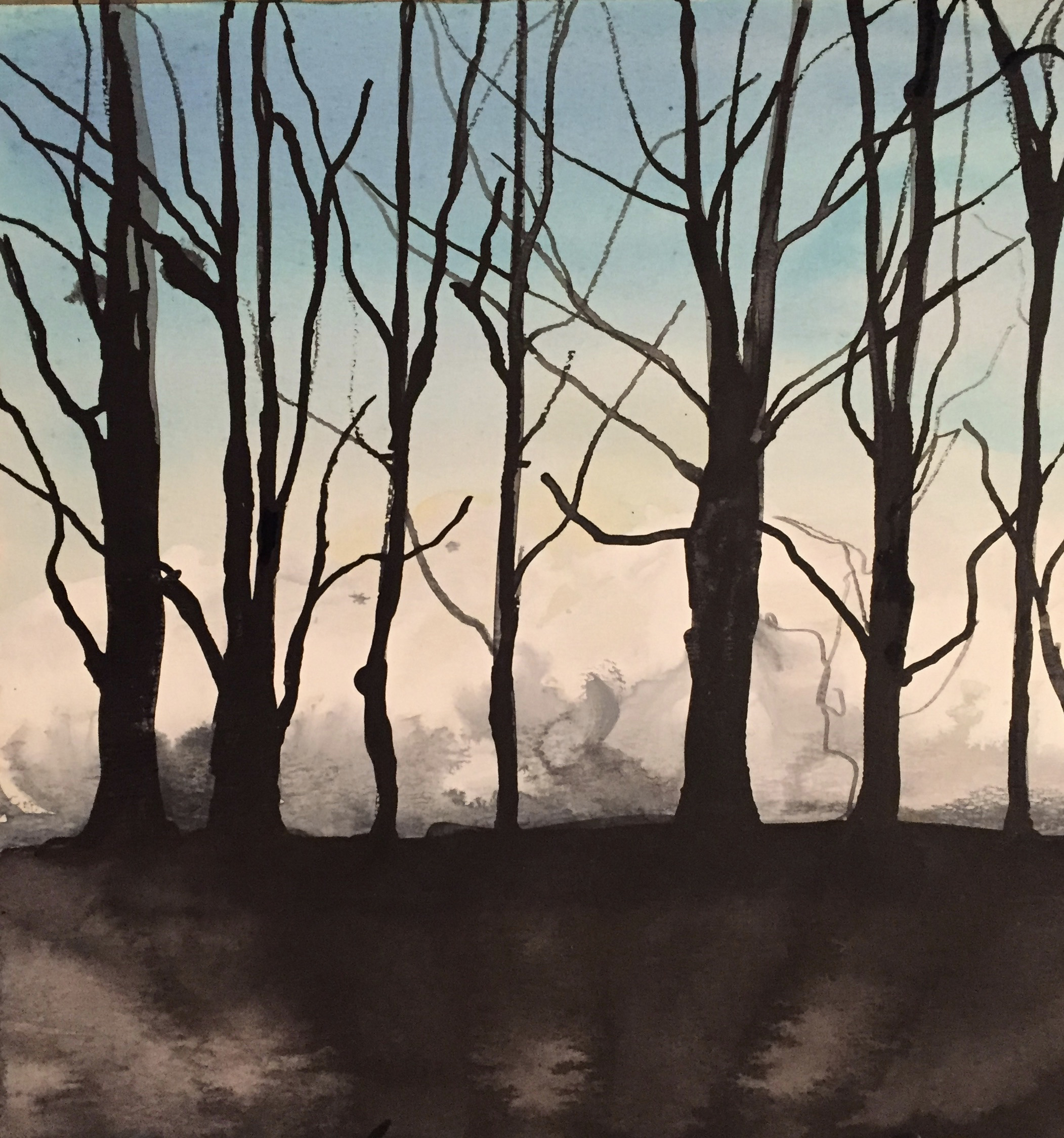 Dartmoor,  Light through trees 01