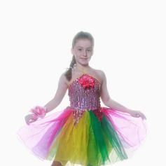 Multi trolls fairy dress child.jpg