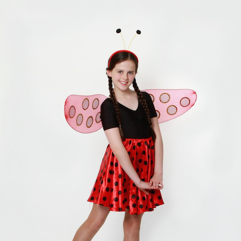 Ladybug lady bird skirt black red spots.