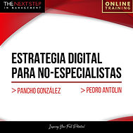 Estratega Digital para No-Especialistas