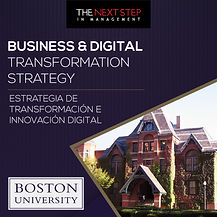 Business & Digital Transformation Strate