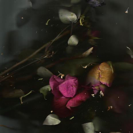 Bouquet-site.jpg