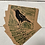 Thumbnail: Crow postcards (5 pack)
