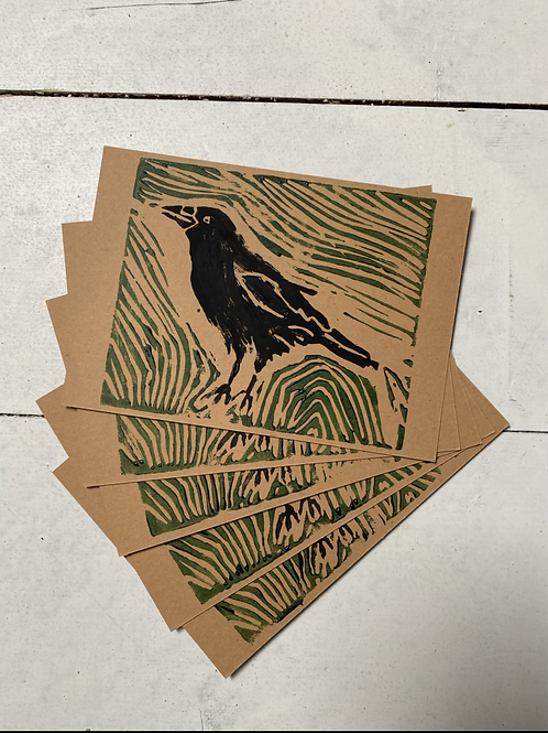 Crow postcards (5 pack)