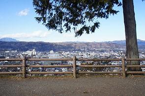 羊山公園見晴しの丘(実景).JPG