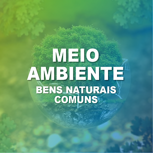 Meio Ambiente Bens COmuns-11.png