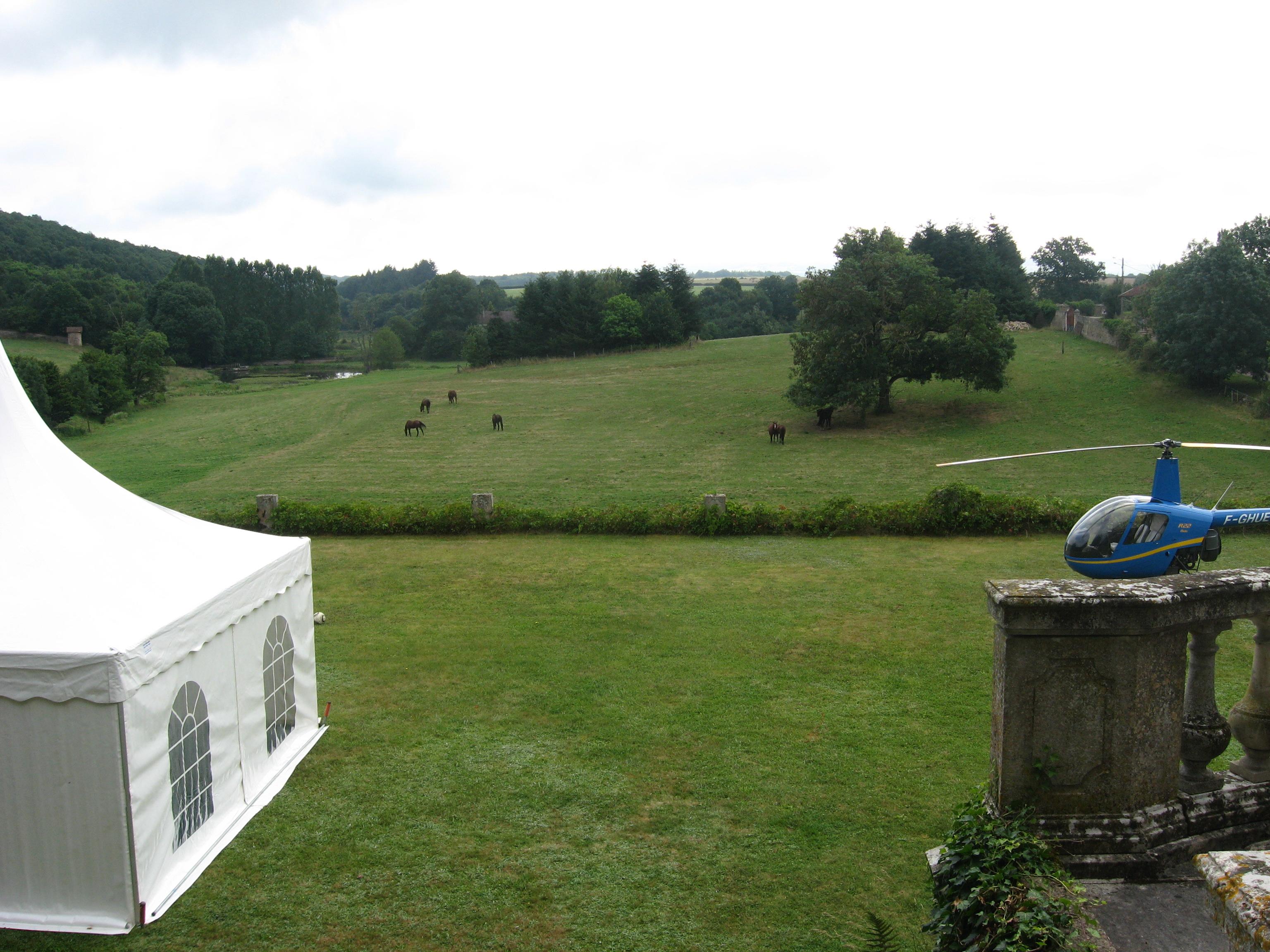 Réception sur la terrasse, Flée