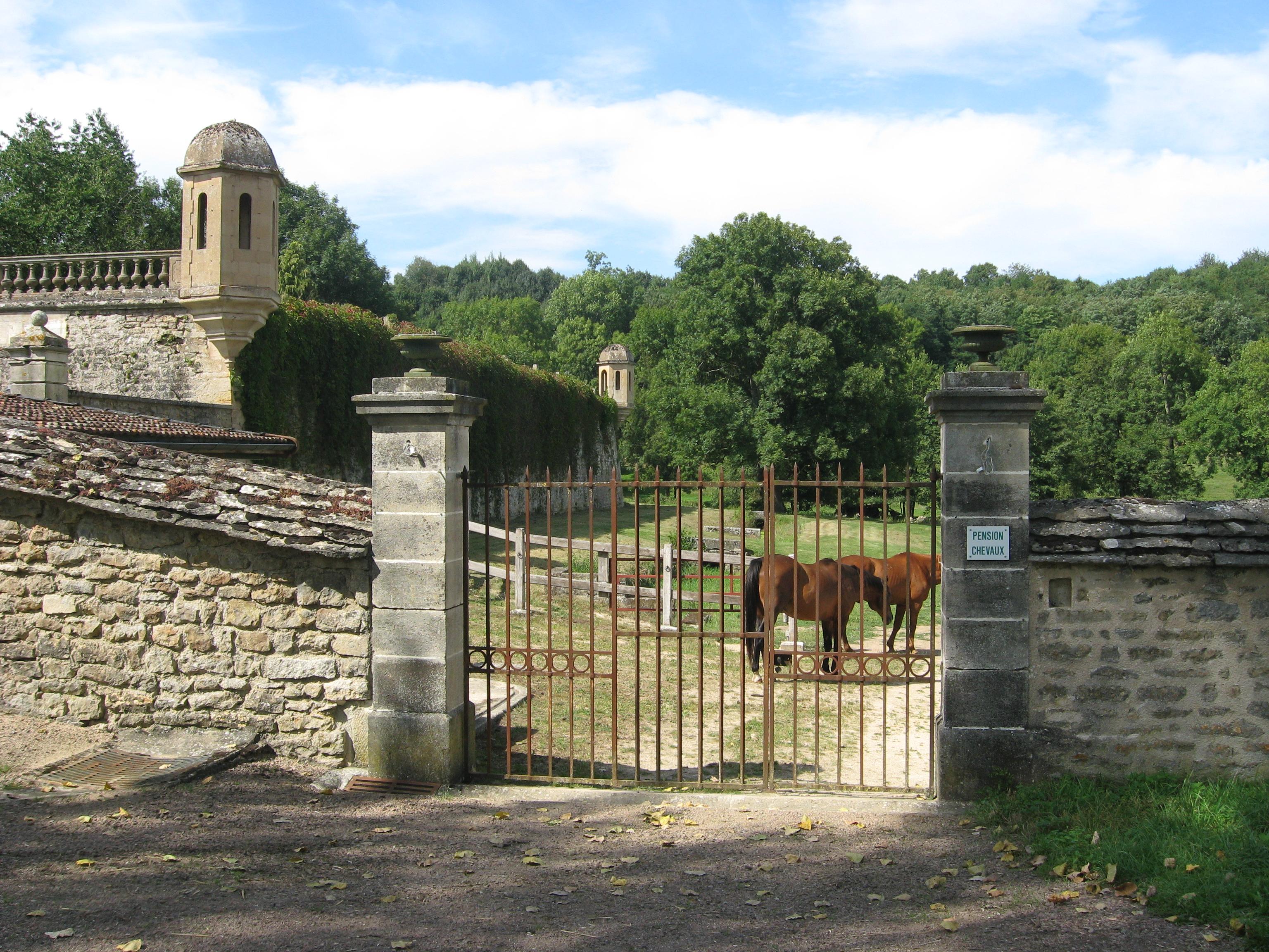 Paddock chevaux, Château de Flée