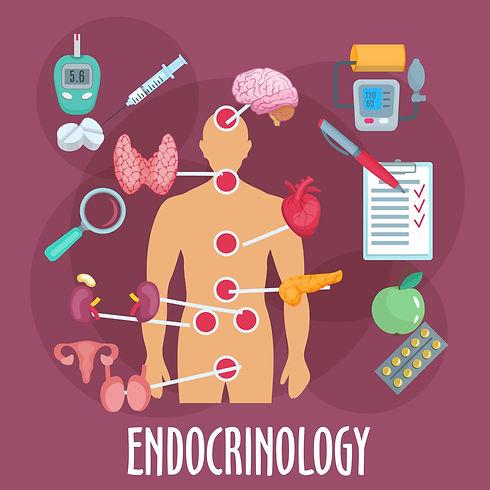 Endocrinology-1536x1536.jpg