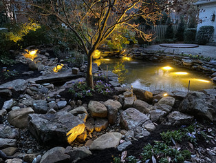 Large EcoSystem Pond and 50' Stream