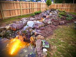 Medium EcoSystem Pond and 15' Stream