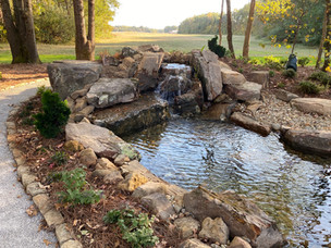 Large EcoSystem Pond With Waterfall