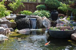 Aquascape Ecosystem Pond